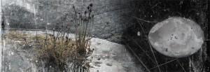 Kylmäpihlajan majakkasaarelta - From the Kylmäpihlaja Lighthouse Island II