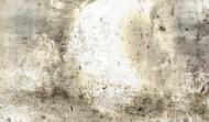 Poissa – Absent 141