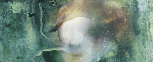 Poissa – Absent 165