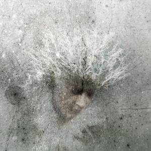 Huurehuntu | Veil of Rime