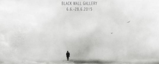 Päivi Hintsanen: Sehnsucht, 6.6.-28.6.2015 Black Wall Gallery, Vaasa