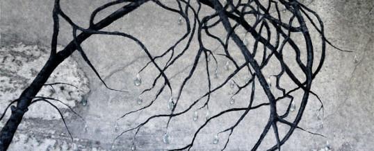Kyynelpuun oksat – Branches of the Tree of Tears