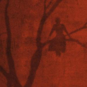 Päivi Hintsanen: Varjo punaisella seinällä - A Shadow on a Red Wall