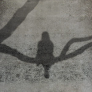 Päivi Hintsanen: Varjo betoniseinällä - A Shadow on a Concrete Wall