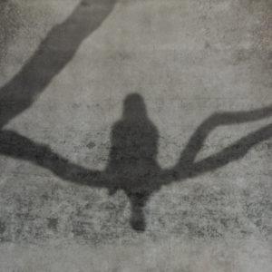 Päivi Hintsanen: Varjo betoniseinällä - A Shadow on a Concrete Wall