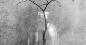 Kyyneltarha / The Garden of Tears 8.8.-1.9.2018 Galleria Aarni, Espoo