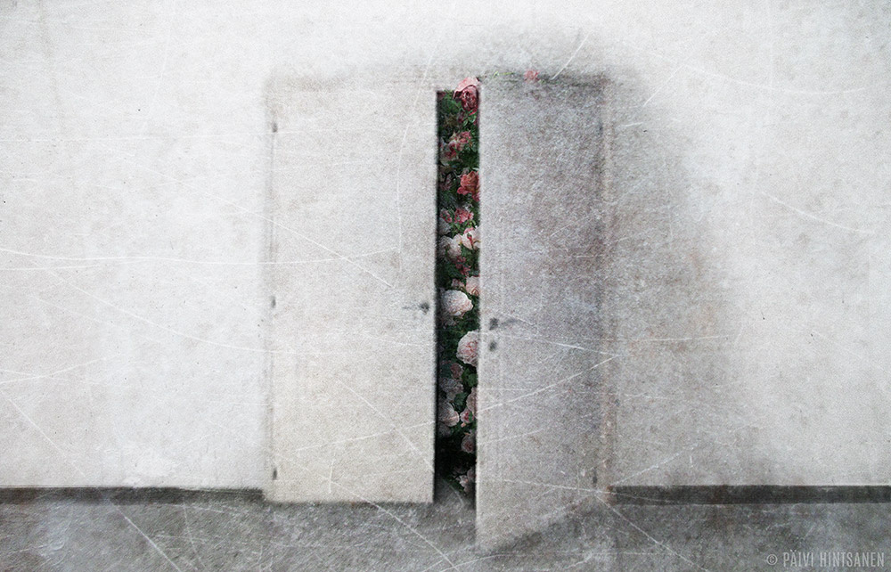 Päivi Hintsanen: Salaisuus - A Secret