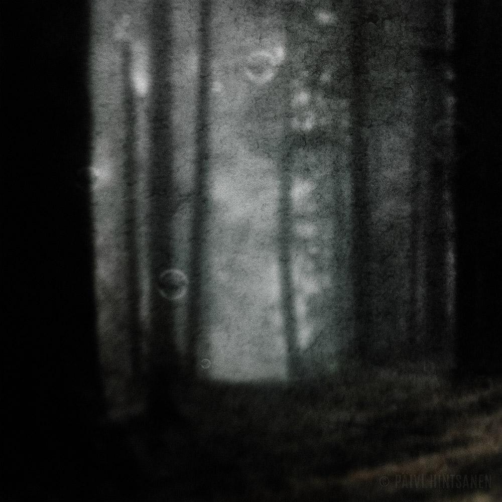 Metsä, jossa saippuakuplat eivät rikkoudu I - The Forest, Where Soap Bubbles Won't Break I
